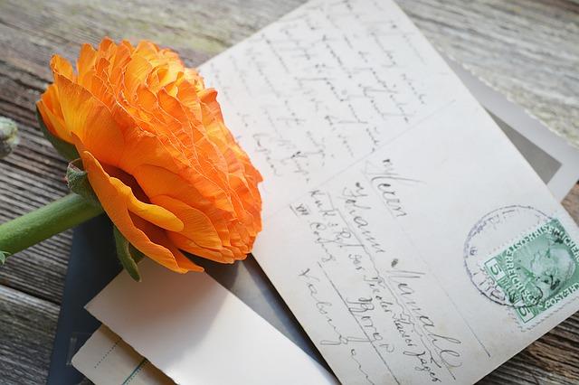 ポストカードと花の画像